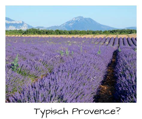 wann blüht der lavendel in frankreich urlaub in der provence an der c 244 te d azur eine gute