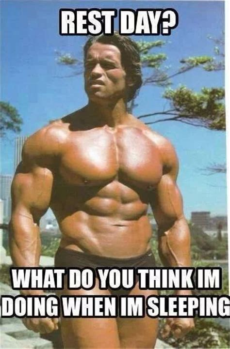 Bodybuilder Meme - 49 best images about arnold schwarzenegger on pinterest