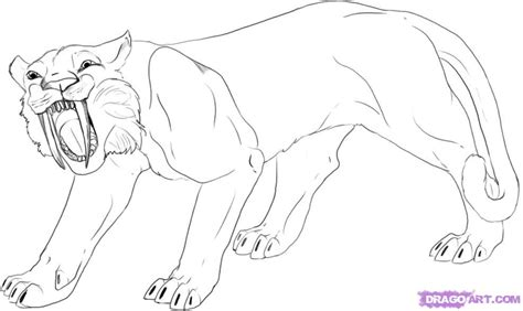 the heaven site how to draw a saber tooth tiger