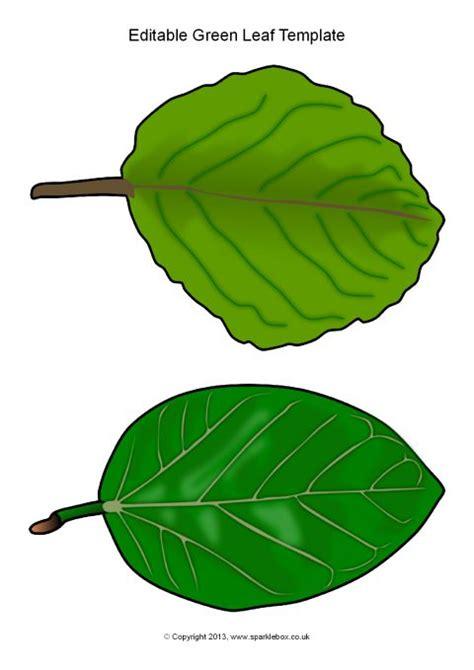 free printable green leaves editable green leaf templates sb10010 sparklebox