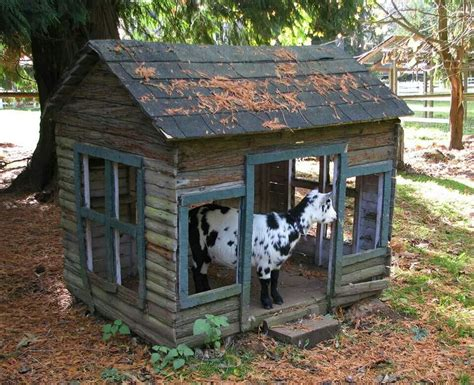 Pin Goat Houses On Pinterest