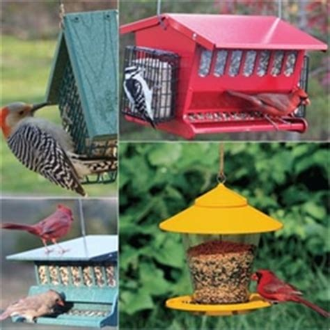 Check Out Fields Accessory Line For Payless by Audubon Bird Houses Bird Feeders Accessories Audubon