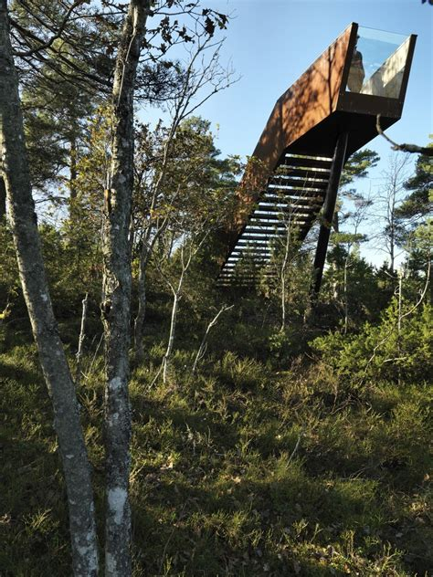 Forest Stair In Stokke Saunders Architecture Archdaily