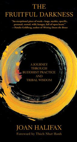 through the darkness books the fruitful darkness a journey through buddhist practice