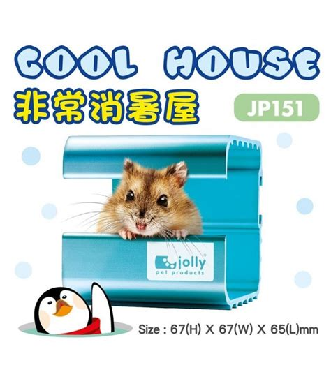 Jolly Eskimo House For Hamster jolly cool house for hamsters small moomoopets sg