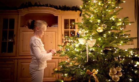 why people put christmas trees in house why your tree is slowing your home broadband speeds tech style