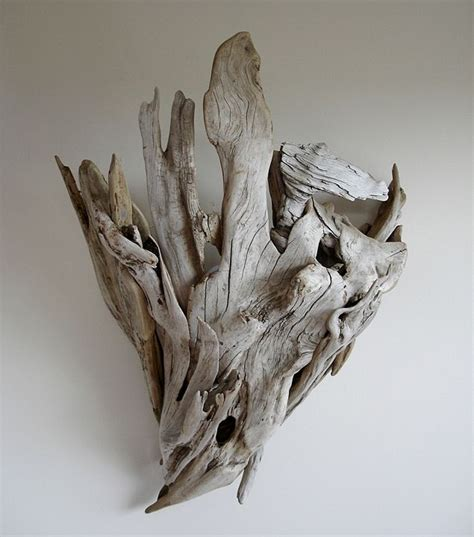 Driftwood Wall Sconce 690 Best Images About Aquarium Ideas And Design On Pinterest