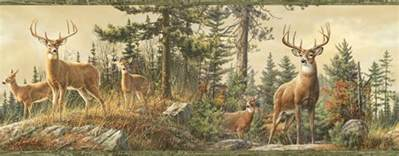 whitetail deer backgrounds wallpaper cave gallery for gt deer wall murals