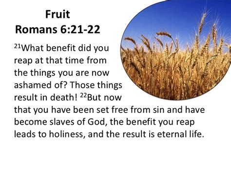 fruit unto holiness repentance and holiness what the scripture really says