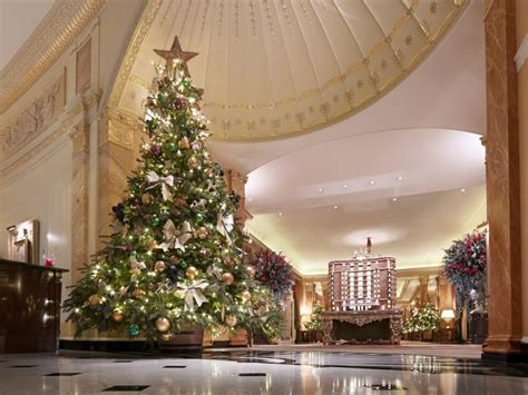 christmas display at the dorchester christmas