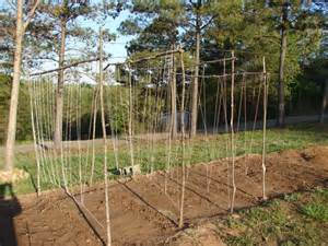 diy how to build a garden trellis for beans plans free