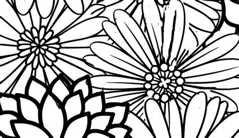 colors free printables no you need to calm down free printable adult coloring page blossoms no you