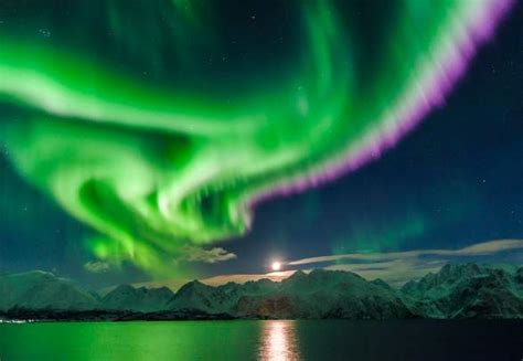 northern norway northern lights norway is the best place to see the northern lights