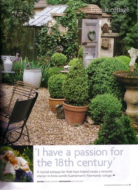 Boxwoods In Planters by Boxwoods In Large Terra Cotta Pots Gardening