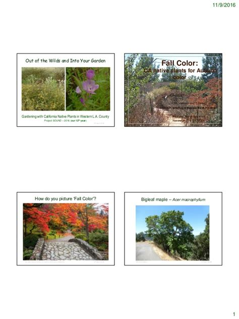 N Notes Pronto Color fall color 2016 notes
