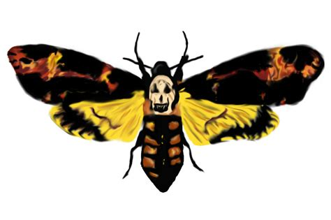 silence of the lambs death head moth by konakoro on