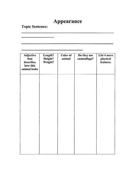 3rd grade animal report template free