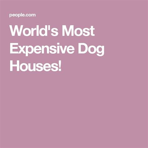 world most expensive dog house 25 best ideas about world s most expensive dog on pinterest world expensive dog