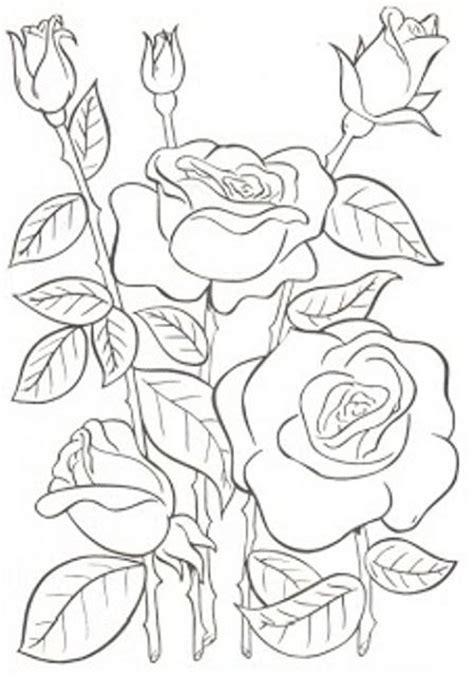 imagenes flores para imprimir las 25 mejores ideas sobre dibujos de flores en pinterest