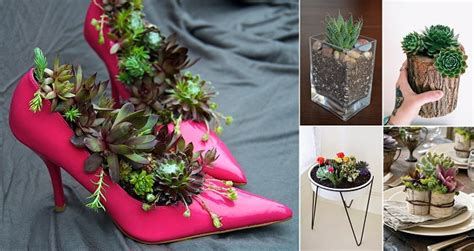 Creative Planter Ideas by The Most Creative Diy Planters Home Design Garden