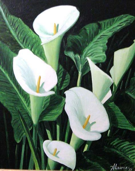imagenes flores calas como pintar calas en tela imagui rosas pinterest