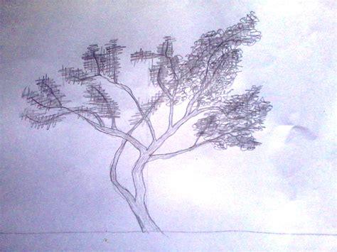 se pohon dengan pensil anitaikan s