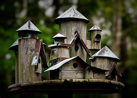 cool bird house plans birdhouses a little bit of nonsense