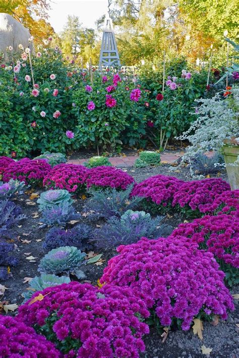 Fall Flower Gardens 17 Best Ideas About Fall Flower Gardens On Outdoor Fall Flowers Flowers Garden And