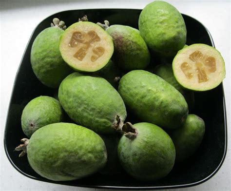 frutti esotici frutteto frutti esotici frutteto