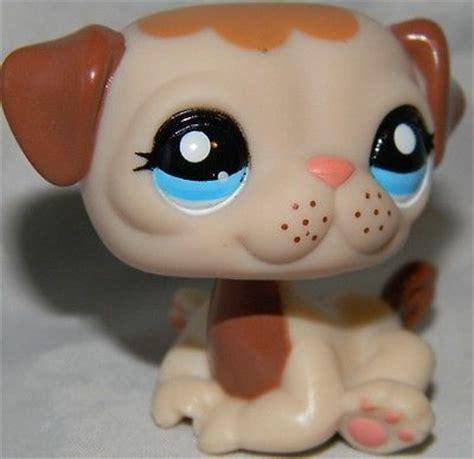 pug pet shop littlest pet shop pug 1753 puppy mocha freckle blue lps