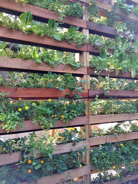 diy patio privacy screens  garden glove