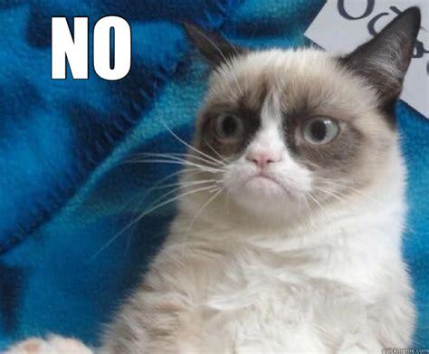 Grumpy Cat Meme No - no grumpy cat no quickmeme