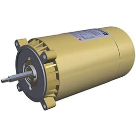 Strainer Basket Keranjang Mesin Hayward 3 4 Hp motor 3 4 hp 60 hz 1 ph ee hayward residential and