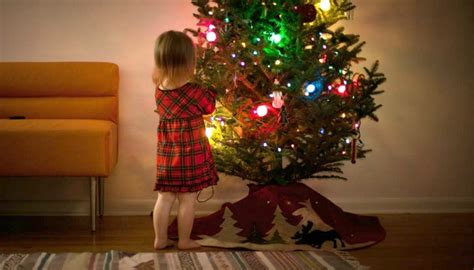 how to keep your christmas tree alive until the new year