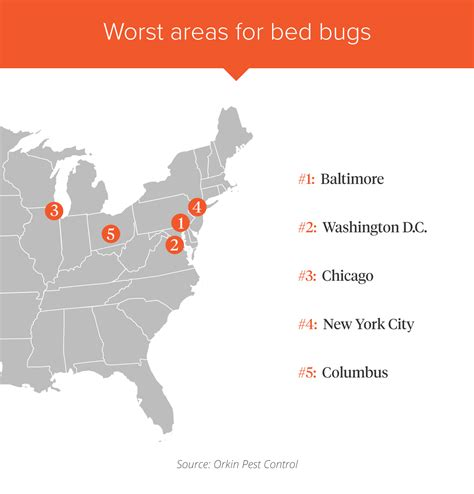 orkin bed bug treatment cost orkin bed bug treatment worst cities for bed bugs in us how to check for bed bug