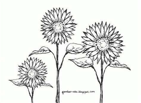 design bolder bunga contoh gambar mewarnai gambar bunga matahari gambar