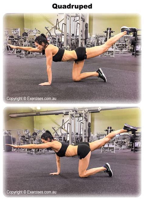 ideas  transverse abdominal exercises