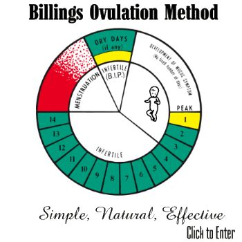 Calendar Fertility Method Calculator The Billings Ovulation Method Of Fertility Regulation