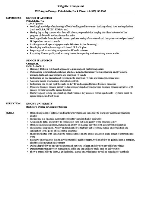 Auditor Resume by Senior It Auditor Resume Sles Velvet
