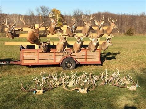 Warrant Search Mn Big Mn Poaching Dismissed For Lack Of Search Warrant