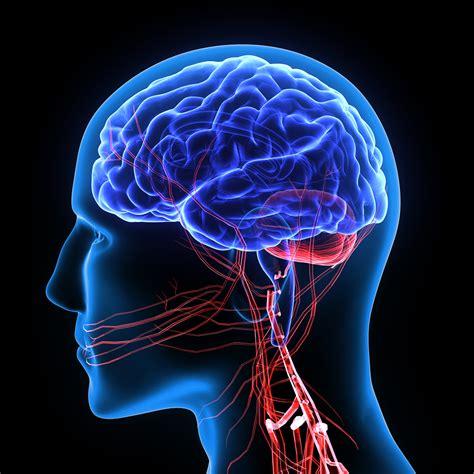 mal di testa in cause il mal di testa mille e una causa