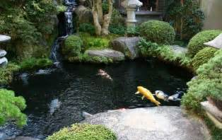 New koi fish pond with japanese art 2012 new home scenery