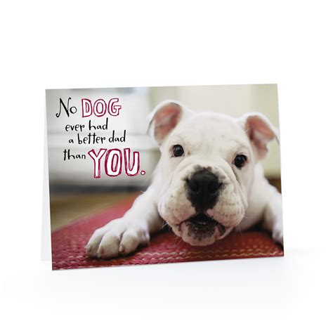 Birthday Cards With Dogs Sleepy Birthday Dog Cards Hallmark Happy Card Pictures