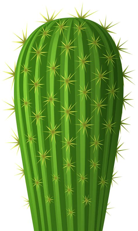 clipart images cactus png clip image gallery yopriceville high