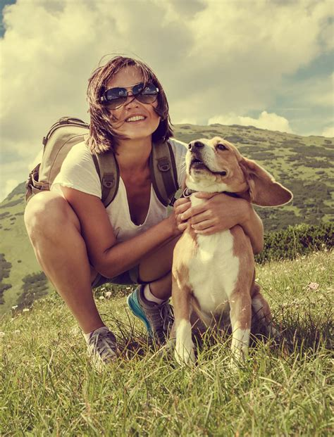 best hiking trips best hiking dogs for trips into the wilderness