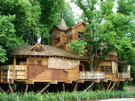 amazing tree houses the world s most amazing tree houses mccullough s tree