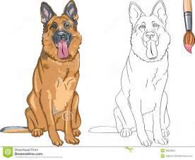 libro da colorare del pastore tedesco sorridente del cane immagini stock immagine 28225854