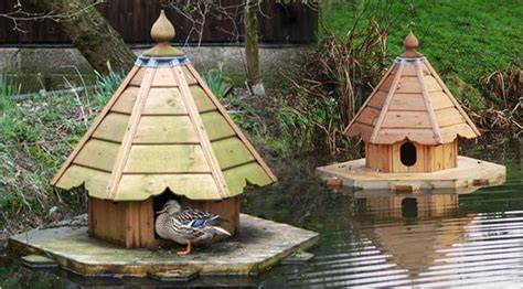 duck houses poultry duck housing and feeding animal husbandry home