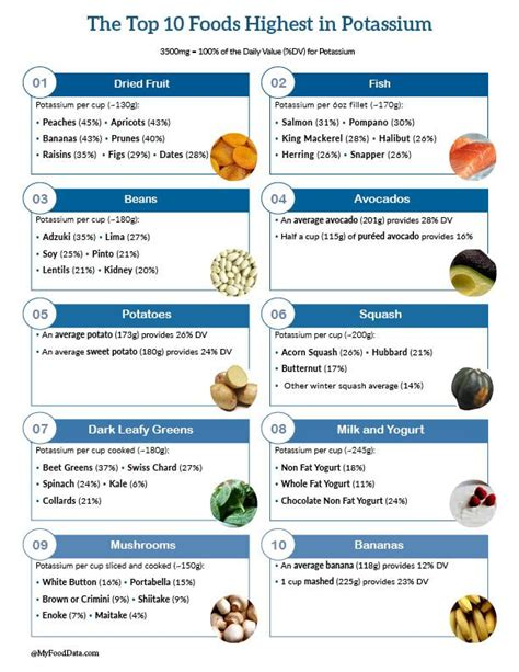 vegetables high in potassium top 10 foods highest in potassium one page printable