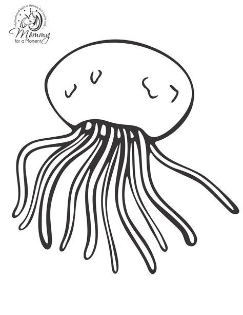 coloring pages of a jellyfish jellyfish coloring pages to download and print for free